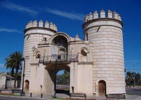 Puerta Palmas