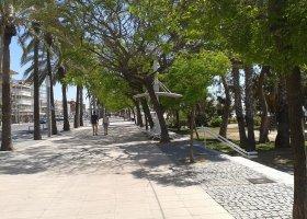 Прибрежный бульвар