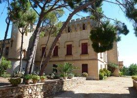 Castell de Vila-seca de Solcina